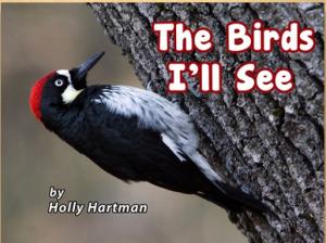 The_birds_I'll_see
